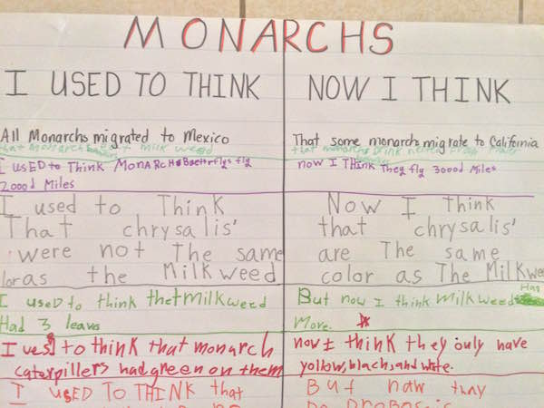 monarchs-i-used-to-think-now-i-think